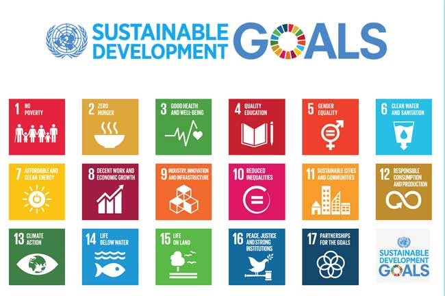 Sustainable Development Goals image